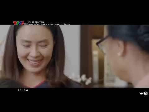Hoa Hồng Trên Ngực Trái Tập 24    Bản Chuẩn VTV3    Full HD 2