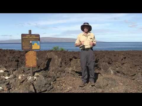 DLNR & YOU Reef Safe Sunscreens HD