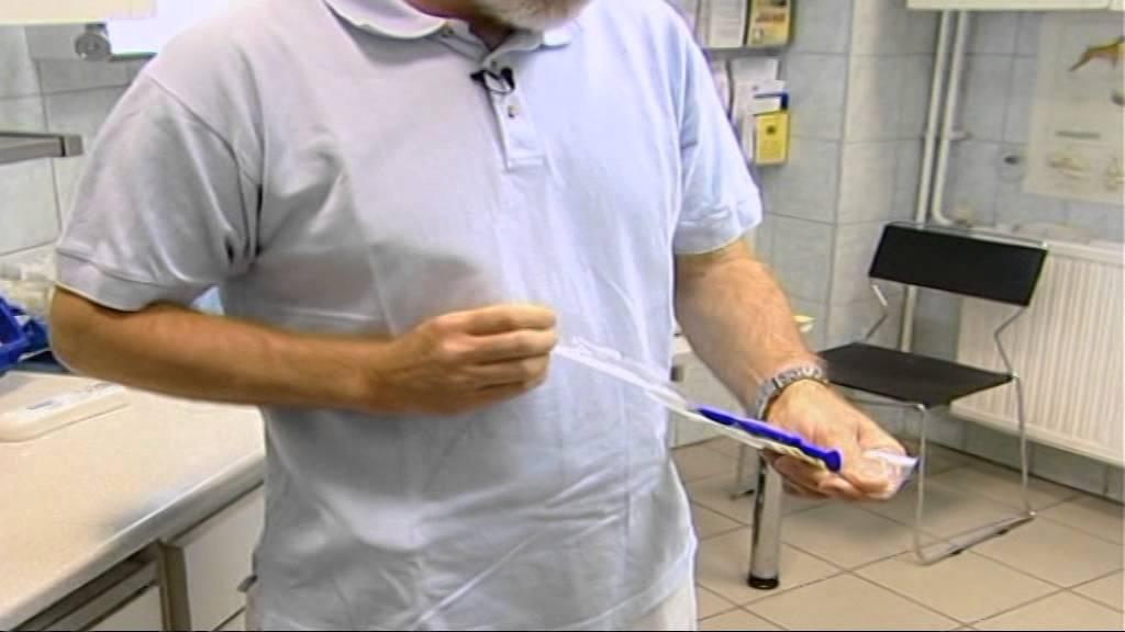 paraziták allergiájának kezelése széles hurok szalag