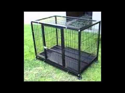 Xxl Dog Kennel Youtube