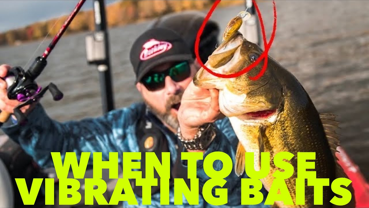 When to use Vibrating Baits (LiveTarget Hunts for Center Craw)