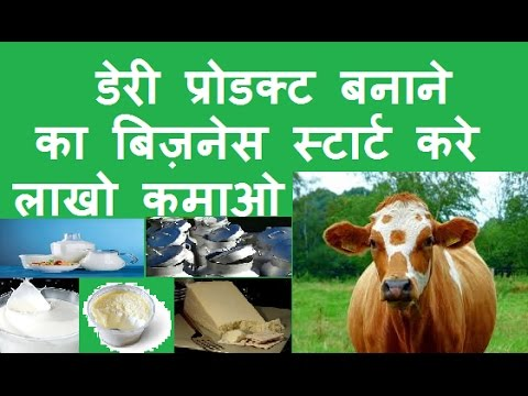 Business Ideas In Hindi Start Dairy Product Manufacturing Business In India And Earn  Lakh Rs Year