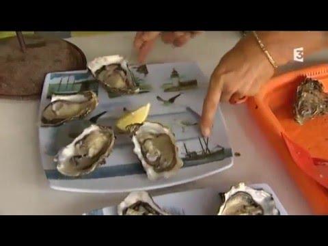 www spiruline marine com   Le grand projet de SPIRU'BREIZH  l'unique SPIRULINE 100% MARINE au MONDE