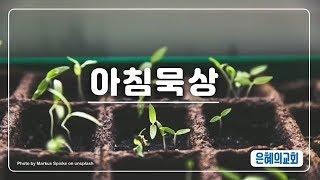 190618 아침묵상  요 2021 은혜의교회 강북구 …