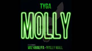 Tyga - Molly (Feat. Wiz Khalifa & Mally Mall) (B Welles Remix)