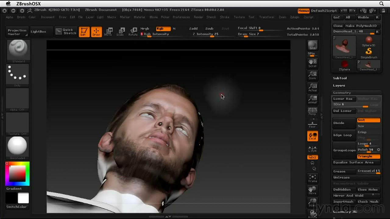 lynda com tutorial   ZBrush 4 Essential Training—Texturing a head: A  practical approach