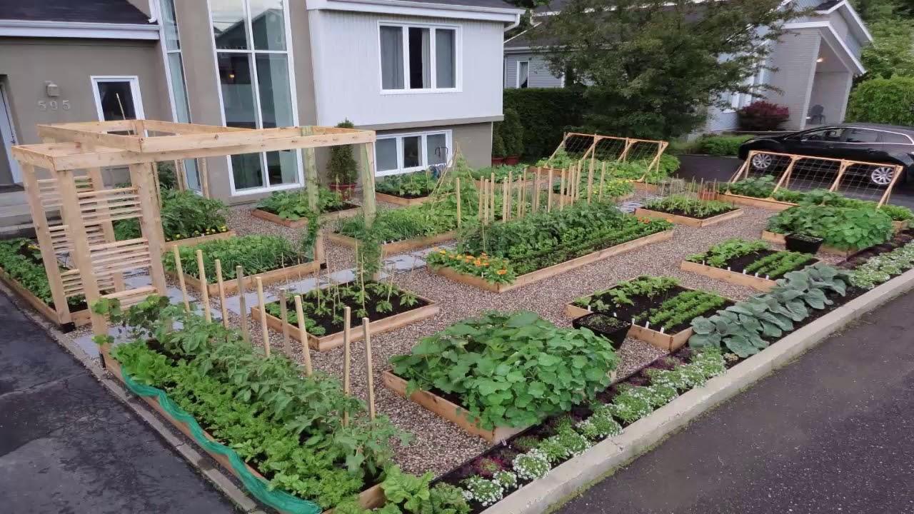 Tomato Garden Design - YouTube