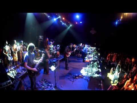 Mickey Hart Band -