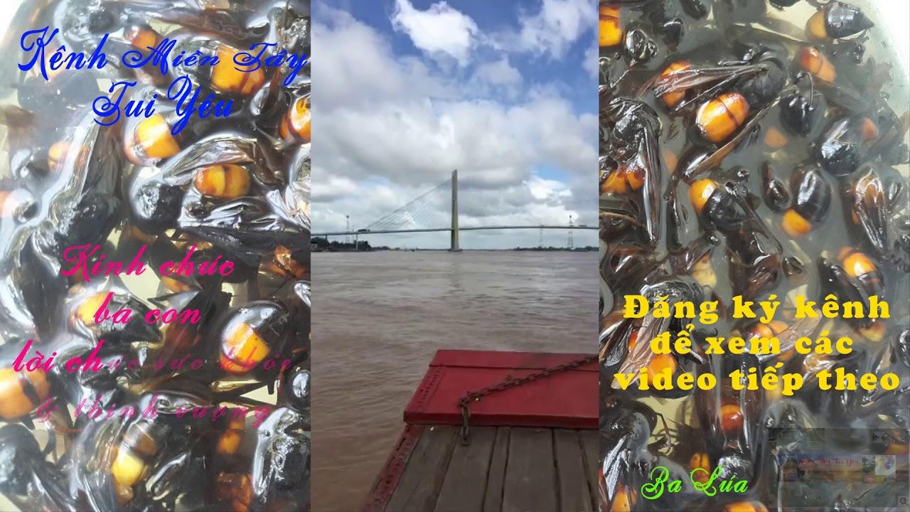 Cần Thơ, Gạo Trắng Nước Trong Ai Đi Đến Đó Lòng Không Muốn Về, Tân Lộc Thốt Nốt Sông Cần Thơ, HD1080