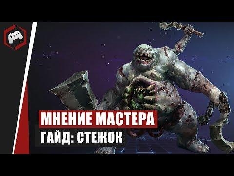 видео: МНЕНИЕ МАСТЕРА: «miwaubivawka» (Гайд - Стежок) | heroes of the storm