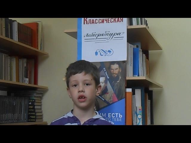 Изображение предпросмотра прочтения – АртемАдаркин читает произведение «Мороз, Красный нос» Н.А.Некрасова