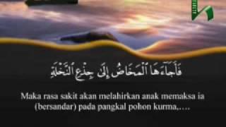 Kelahiran Nabi Isa AS (Al-Qur`an Terjemahan Indonesia)