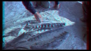 Чудища морей: Доисторическое приключение 3D (HD)