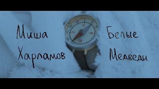 Миша Харламов - Белые Медведи (Премьера Клипа)
