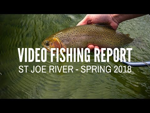 St Joe River - Video Fishing Report - Spring 2018