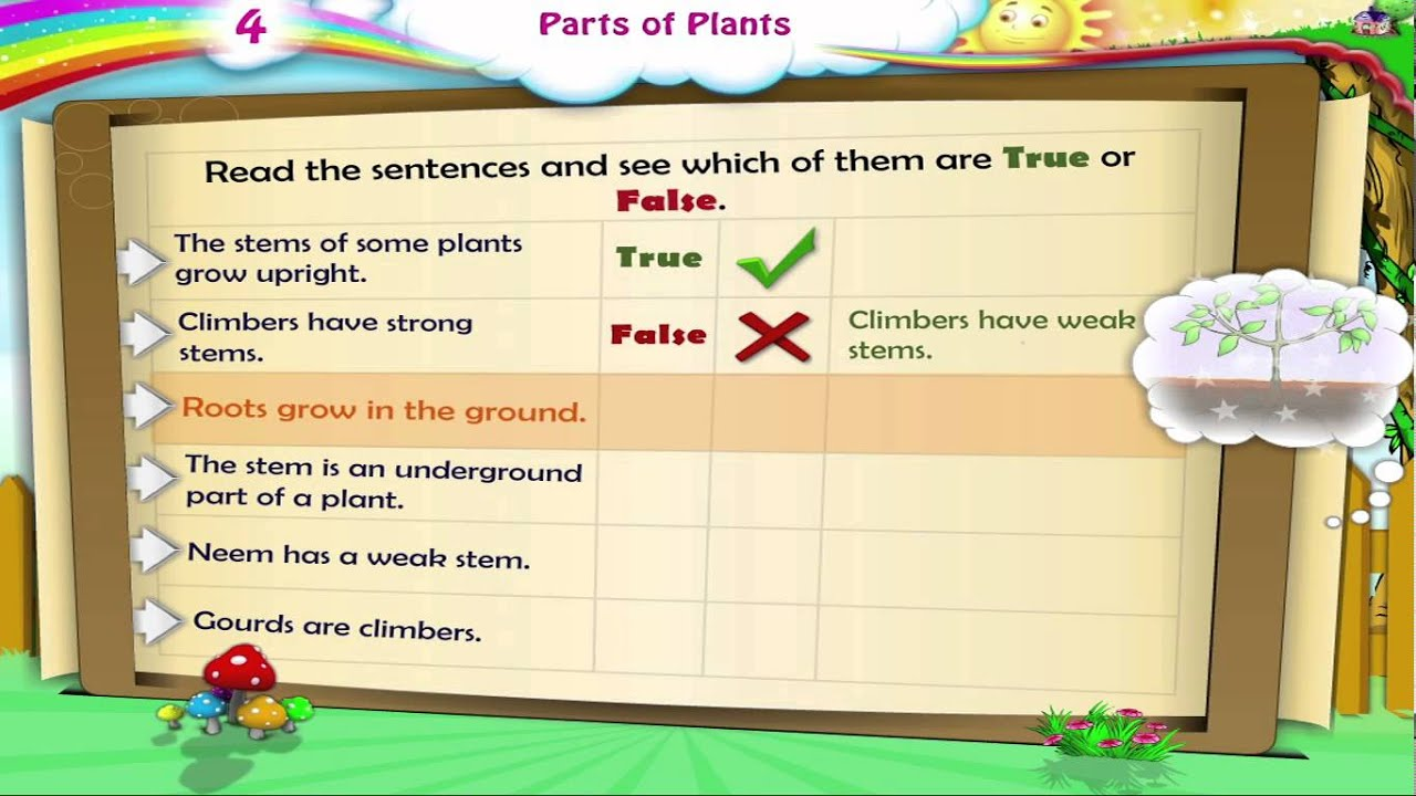 Learn grade 3 science parts of plants youtube robcynllc Gallery