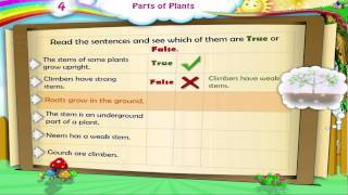Learn Grade 3 - Science - Parts of Plants