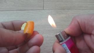 당신이 몰랐던 오렌지껍질의 위력 The hidden functions of the orange peel