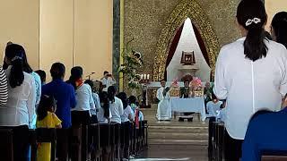 Đoàn Thiếu Nhi Thánh Thể Bảo Thị chúc Tết Cha cố , cha xứ và thầy xứ.
