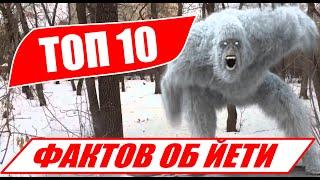 ЙЕТИ - 10 реальных фактов о Снежном Человеке!