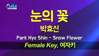 박효신(Park Hyo Shin) - 눈의 꽃 (여자키…
