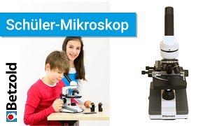 Schüler-Mikroskop | Betzold