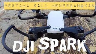 Pengalaman pertama menerbangkan drone DJI SPARK