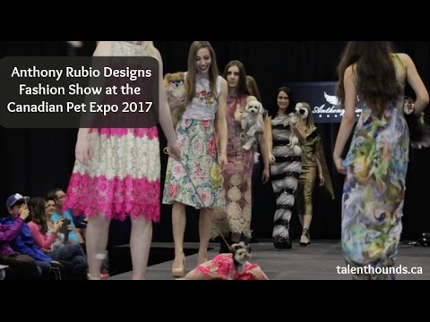 Anthony Rubio Designs Fashion Show at the Canadian Pet Expo 2017