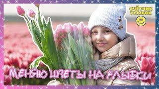 Поздравление с 8 марта Дарю цветы прохожим