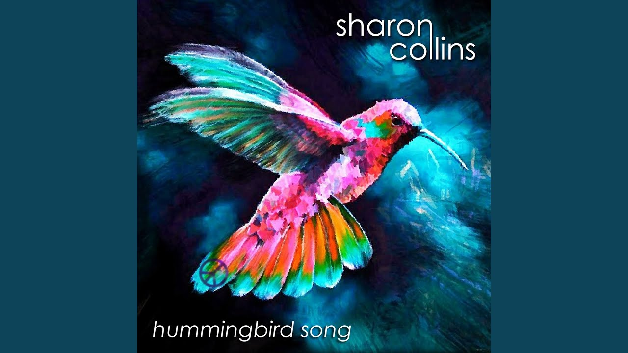 Essay song hummingbird current topics research paper economics