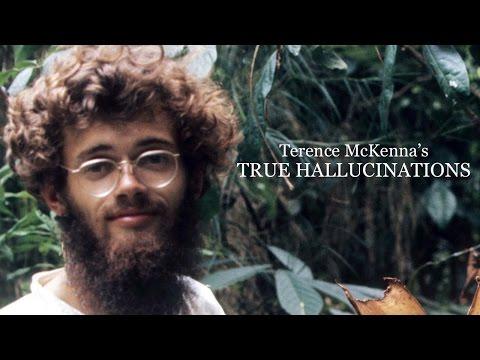 Skutočné Halucinácie | Terence McKenna - HD film