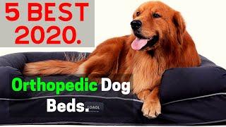 5 Best Orthopedic Dog Beds 2020 | Best Memory foam Dog Bed Amazon.
