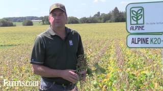 ALPINE Agronomy Tips: HKW6 & K20-S Liquid Fertilizers Can Increase Soybean Yields
