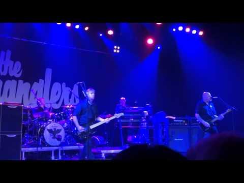 THE STRANGLERS @ REO ROCK, ROESELARE 06 06 15 NICE 'N SLEAZY