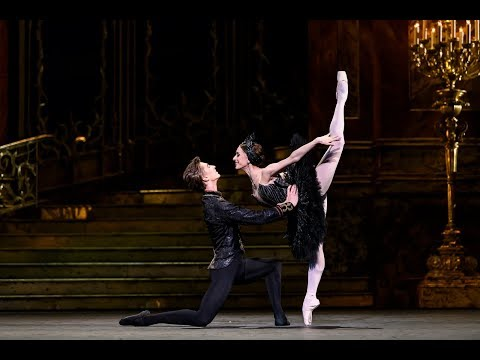 Swan Lake - Coda from the Black Swan pas de deux in Act III