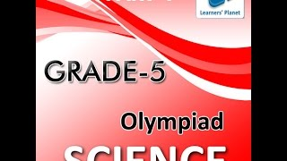5th Grade Science Olympiad Practice Quizzes