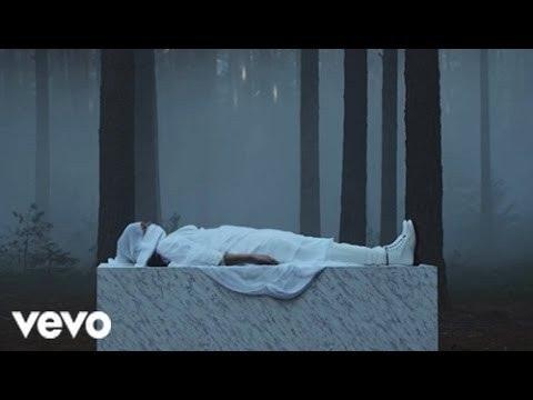 Sia - Loved Me Back To Life (Lyrics)