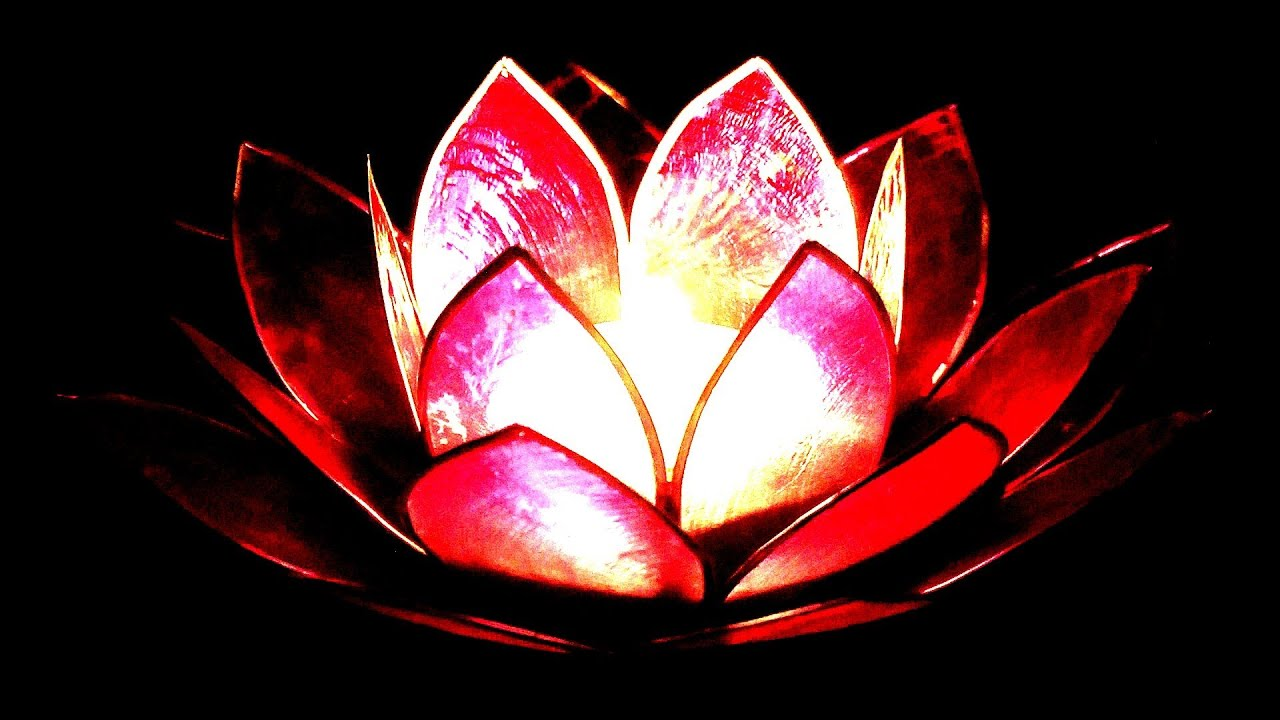 1 hour pink lotus relaxation meditation reiki massage sleep video 1 hour pink lotus relaxation meditation reiki massage sleep video youtube izmirmasajfo