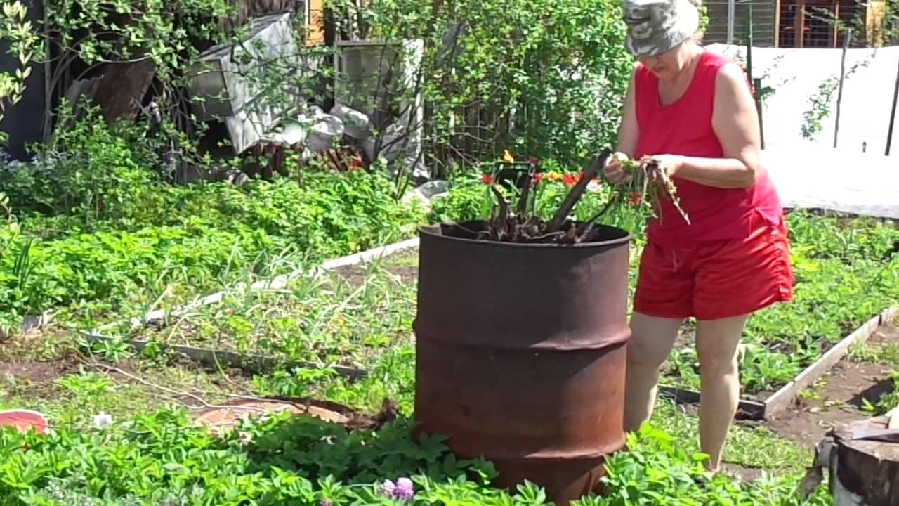 Жена на огороде