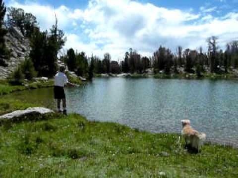 Sun Valley Idaho Flyfishing