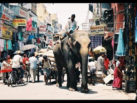 """J'irai faire mon marché à """"Main Bazar"""""""