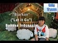 """Frame from Disney Frozen """"Let It Go"""" (""""Biarkan"""") in Indonesia Language by; Gaby"""
