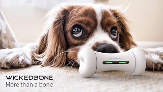Wickedbone, World's First Smart & Interactive Dog Toy