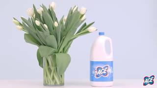 Come far durare di più i fiori usando la candeggina