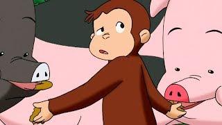 Jorge el Curioso en Español  Jorge y el Pulgar Gigante  Mono Jorge  Caricaturas para Niños