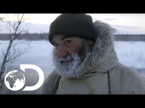 The Dangers of Bears in Alaska | The Last Alaskans