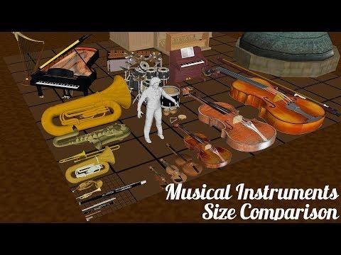 Musical Instruments Size Comparison