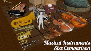 Musical Instruments Size Comparison