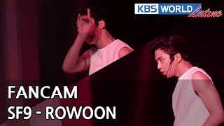 [FOCUSED] SF9's ROWOON - Now or Never [Music Bank / 2018.08.03]