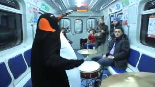 Penguin Subway Drum Solo